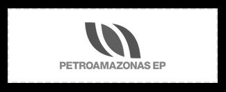 rga RGA Diseño y Construcción petroamazonas cliente light